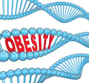 dna-and-obesity-are-linked