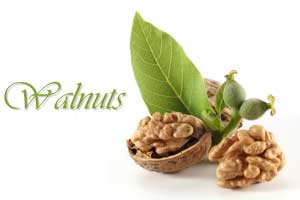 walnuts help to improve memory